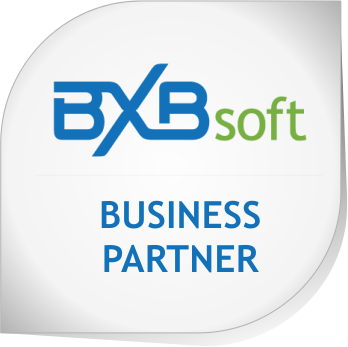 BXBsoft_BusinessPartner_v01